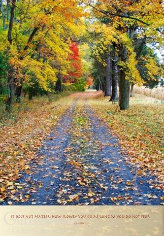 Purposeful Path