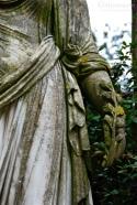 Lichen Lady