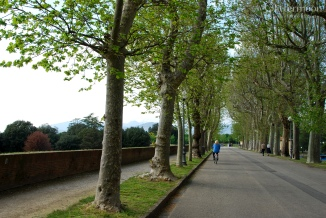 On the Promenade in Lucca