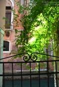 Wisteria Gate